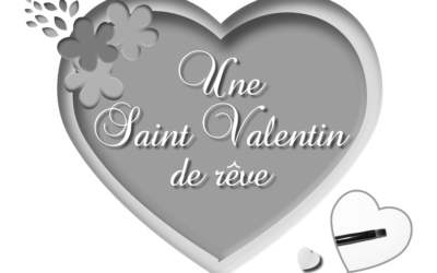 Un cadeau pour la St Valentin ?